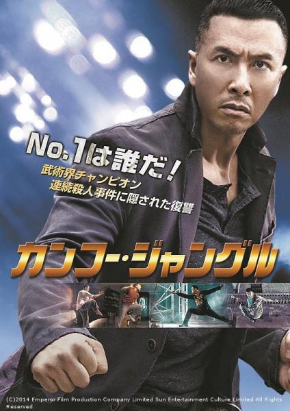 kung-fu-jungle-10